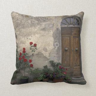 Europe, Italy, Tuscany, Chianti, Tuscan doorway Cushions