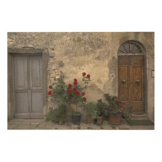 Europe, Italy, Tuscany, Chianti, Tuscan doorway Wood Canvas