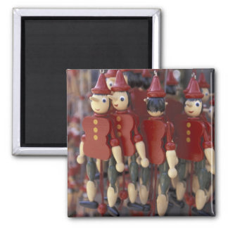 Europe, Italy, Tuscany, Collodi, Home of Square Magnet