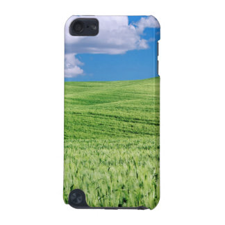 Europe, Italy, Tuscany. Landscape Of Wheat iPod Touch 5G Covers
