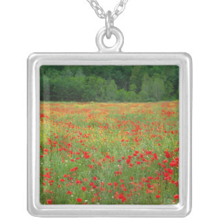Europe, Italy, Tuscany, red poppies in field. Square Pendant Necklace