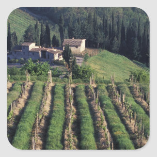 Europe, Italy, Tuscany. Scenic villa cyprus. Square Sticker