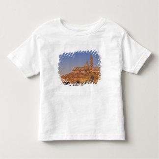 Europe, Italy, Tuscany, Siena. 13th century 3 Tee Shirts