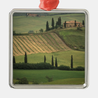 Europe, Italy, Tuscany, Val d' Orcia, Tuscan Christmas Ornaments