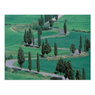 Europe, Italy, Tuscany. Winding road near Postcard