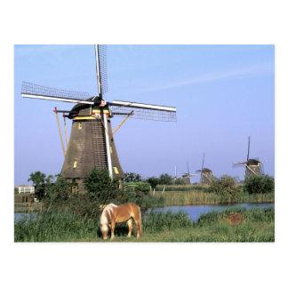Europe, Netherlands, Zuid Holland, Kinderdijk. 2 Postcard