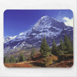 Europe, Switzerland, Eiger. Fall colors abound Mouse Pad