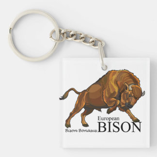 european bison key ring