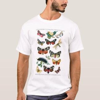 European Butterflies T-Shirt