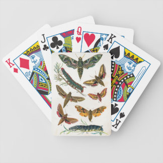 European Butterfly Bicycle Playing Cards
