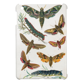 European Butterfly Case For The iPad Mini