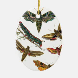 European Butterfly Ceramic Oval Decoration