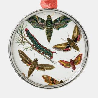 European Butterfly Metal Ornament
