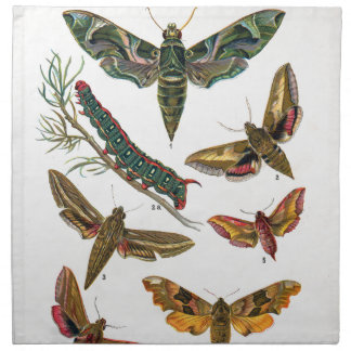 European Butterfly Napkin
