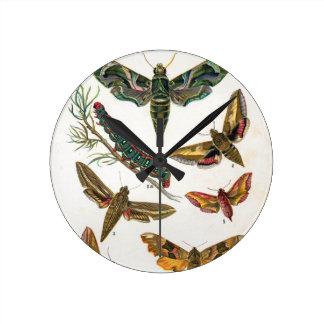 European Butterfly Round Clock