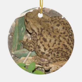 European Common Toad Custom Birthday Round Ceramic Decoration