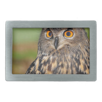 European Eagle Owl Belt Buckles