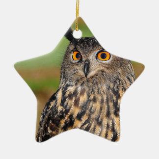 European Eagle Owl Ceramic Ornament