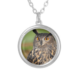 European Eagle Owl Silver Plated Necklace