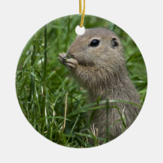 European ground squirrel Ziesel Double-Sided Ceramic Round Christmas Ornament
