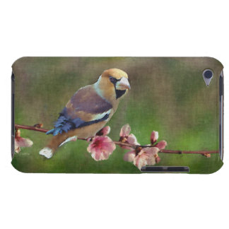 European hawfinch digital painting barely there iPod cases