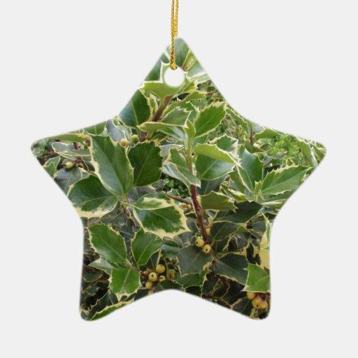 European Holly Ornaments