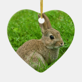 European-rabbit image for  Heart Ornament