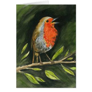 European Robin Card