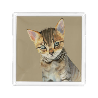 European Shorthair Kitten Watercolor Painting Acrylic Tray