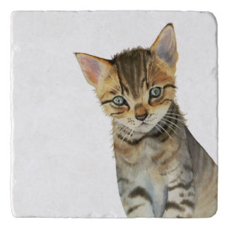 European Shorthair Kitten Watercolor Painting Trivet