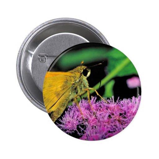 European skipper butterfly on Mistflower Pinback Buttons
