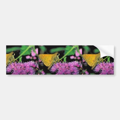 European skipper butterfly on Mistflower Bumper Stickers