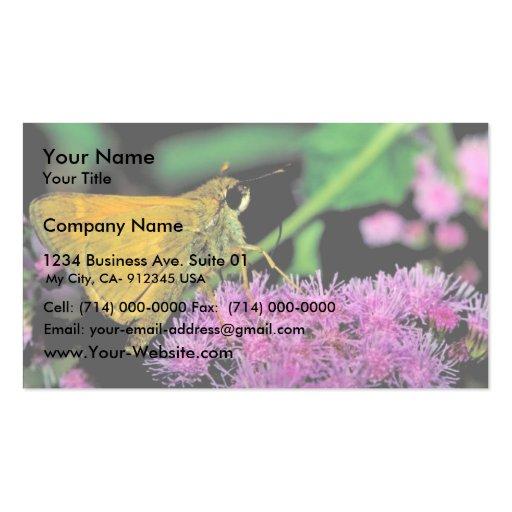 European skipper butterfly on Mistflower Business Card Template