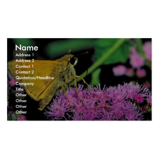 European skipper butterfly on Mistflower Business Card Templates
