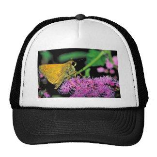 European skipper butterfly on Mistflower Mesh Hats