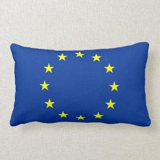 european union country flag pillow