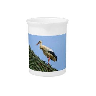 European white stork, ciconia beverage pitcher