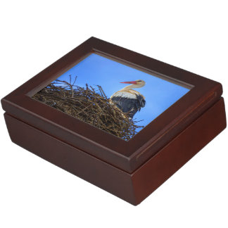 European white stork, ciconia, in the nest keepsake box