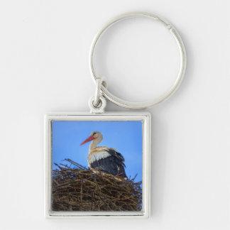 European white stork, ciconia, in the nest key ring