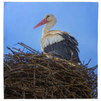 European white stork, ciconia, in the nest napkin