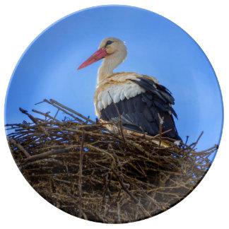 European white stork, ciconia, in the nest porcelain plates