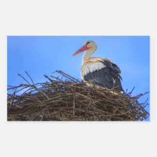European white stork, ciconia, in the nest rectangular sticker