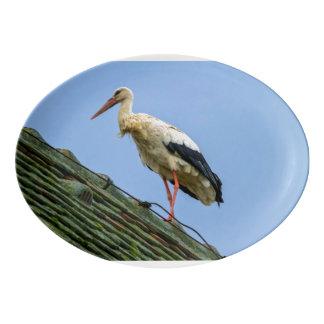 European white stork, ciconia porcelain serving platter