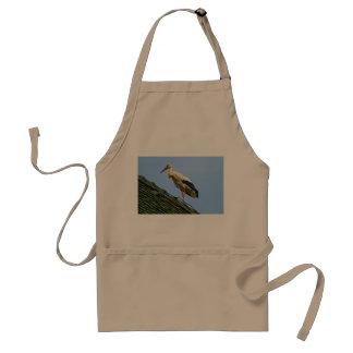 European white stork, ciconia standard apron