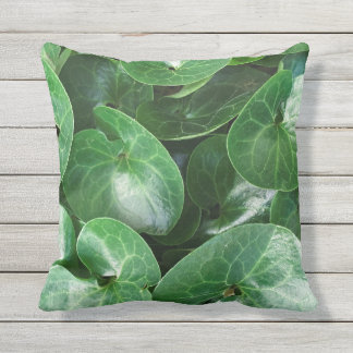 European Wild Ginger Plant Glossy Leaves Close Up Outdoor Cushion