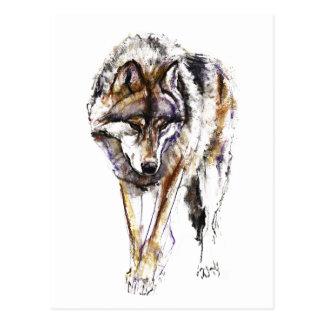 European Wolf Postcard