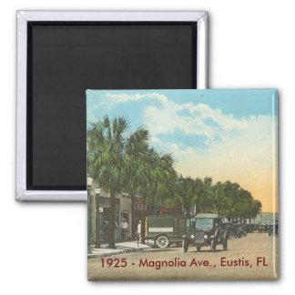EUSTIS, FL - 1925 - Magnolia Ave. Magnet