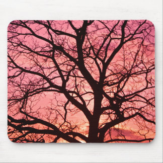 Evening Blush Tree Silhouette Mousepad