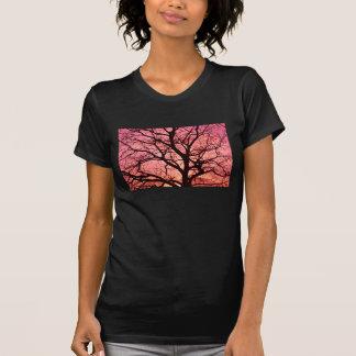 Evening Blush Tree Silhouette Shirt