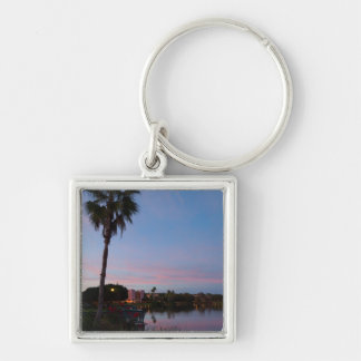 Evening By The Palm Tree Key Ring